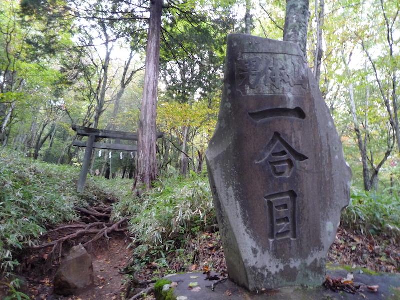 f:id:yuzuki-miki:20181018140610j:plain
