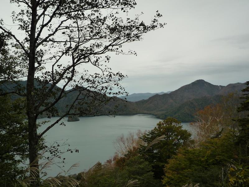 f:id:yuzuki-miki:20181018153537j:plain