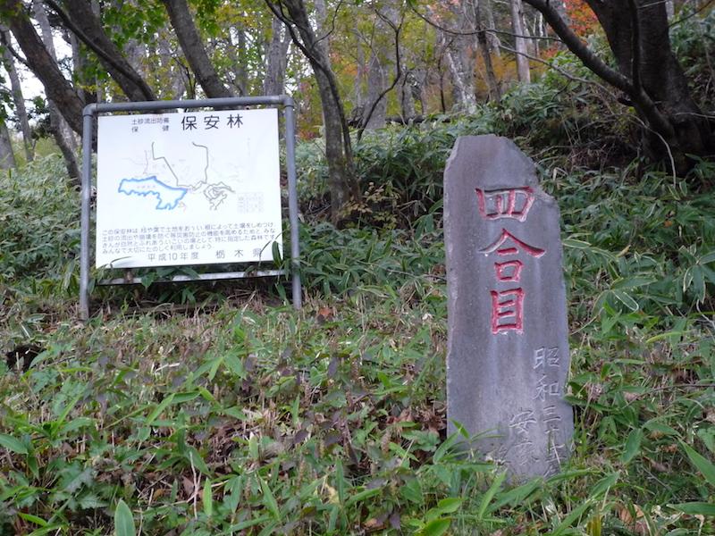 f:id:yuzuki-miki:20181018154343j:plain