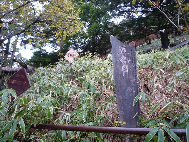f:id:yuzuki-miki:20181019022618j:plain