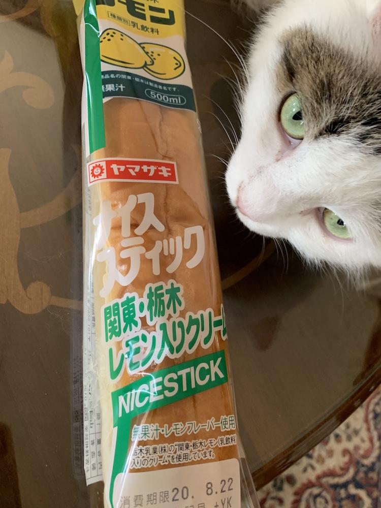 f:id:yuzuki-miki:20200819125428j:plain