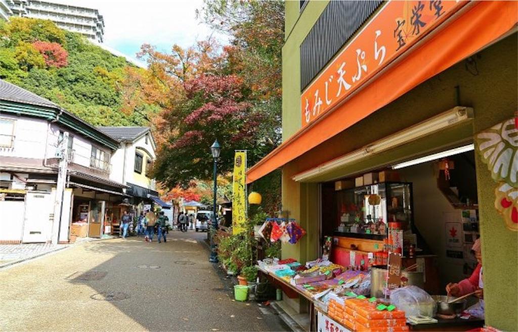 f:id:yuzuki-seraby:20170226143149j:image