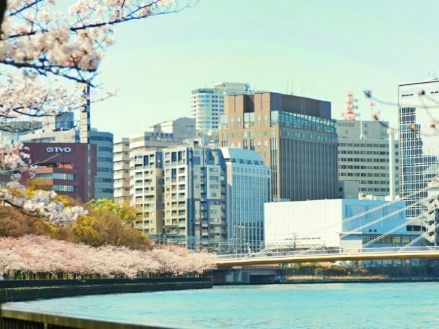 f:id:yuzuki-seraby:20170315212418j:image