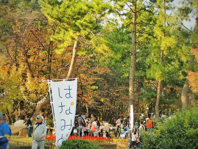 f:id:yuzuki-seraby:20171103231334j:image