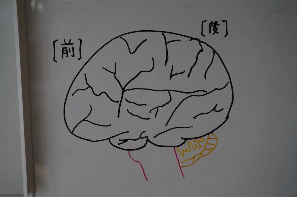f:id:yuzuki-shimizu:20180723144501j:image