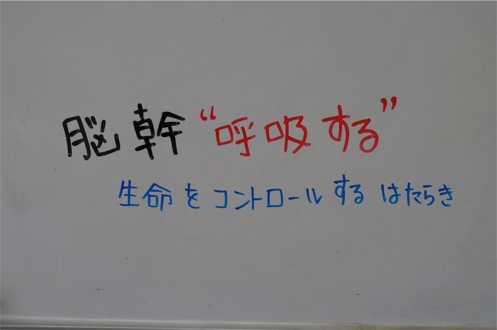 f:id:yuzuki-shimizu:20180723150800j:image