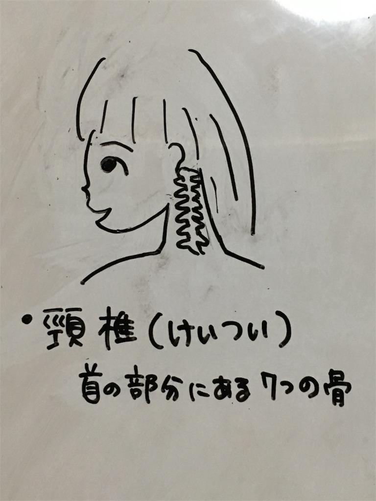 f:id:yuzuki-shimizu:20180827183424j:image