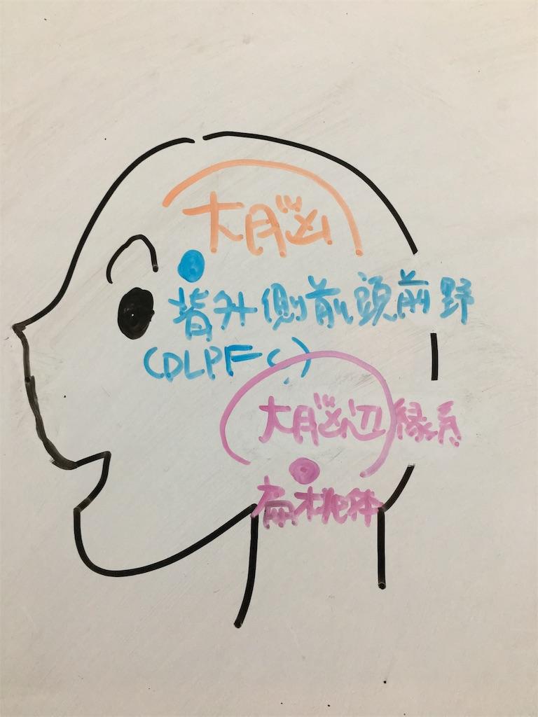f:id:yuzuki-shimizu:20181124182752j:image
