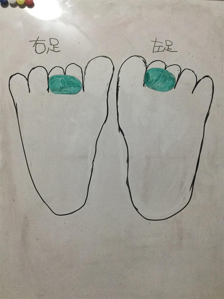 f:id:yuzuki-shimizu:20181202005417j:image