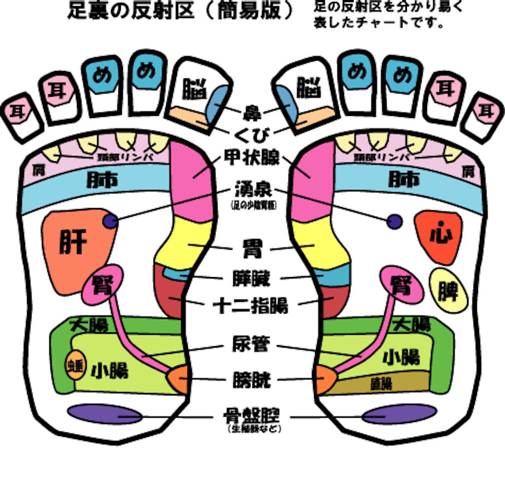 f:id:yuzuki-shimizu:20181202021335p:image