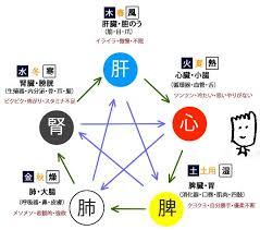 f:id:yuzuki-shimizu:20181206215314j:plain