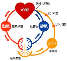 f:id:yuzuki-shimizu:20190306193135p:plain