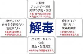 f:id:yuzuki-shimizu:20190320115317j:plain