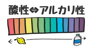 f:id:yuzuki-shimizu:20190427210106j:plain