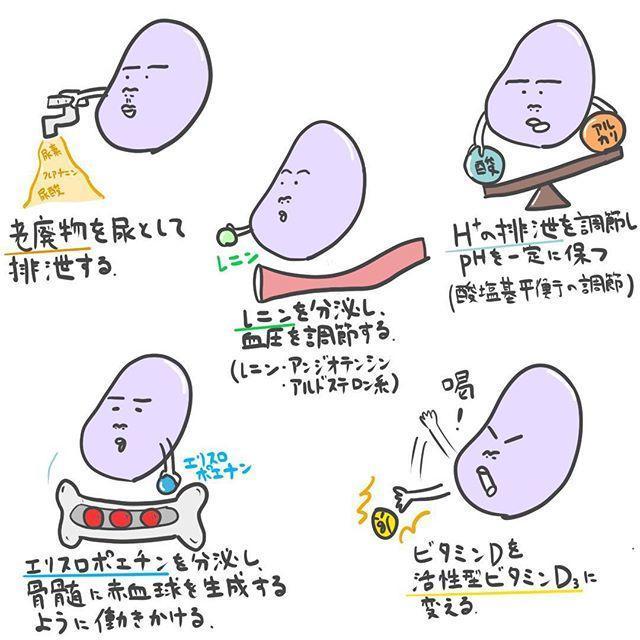 f:id:yuzuki-shimizu:20190527135511j:plain
