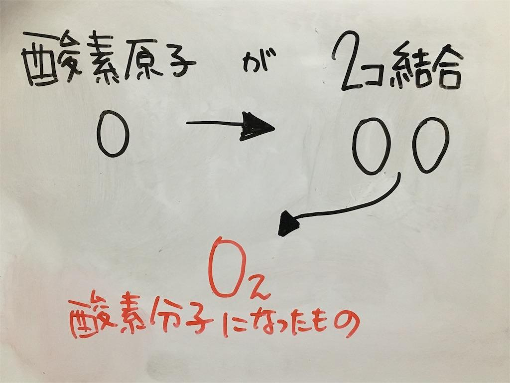 f:id:yuzuki-shimizu:20190614180420j:image