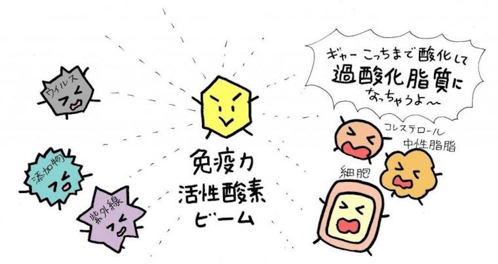 f:id:yuzuki-shimizu:20190614180556j:plain