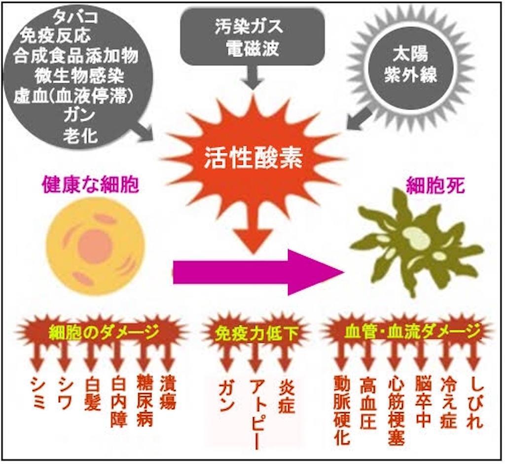 f:id:yuzuki-shimizu:20190614180559j:image