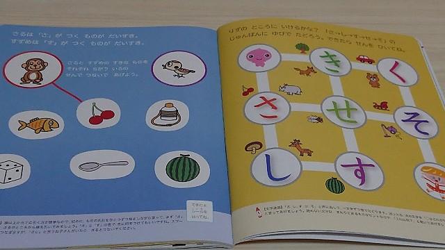 f:id:yuzukimusyamusya:20190604230242j:image