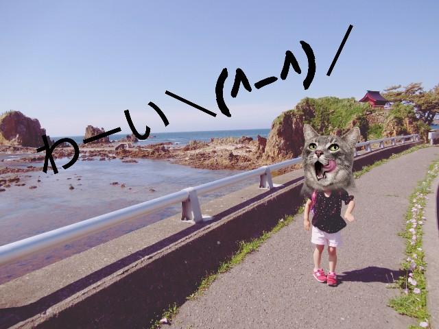 f:id:yuzukimusyamusya:20190714161807j:image