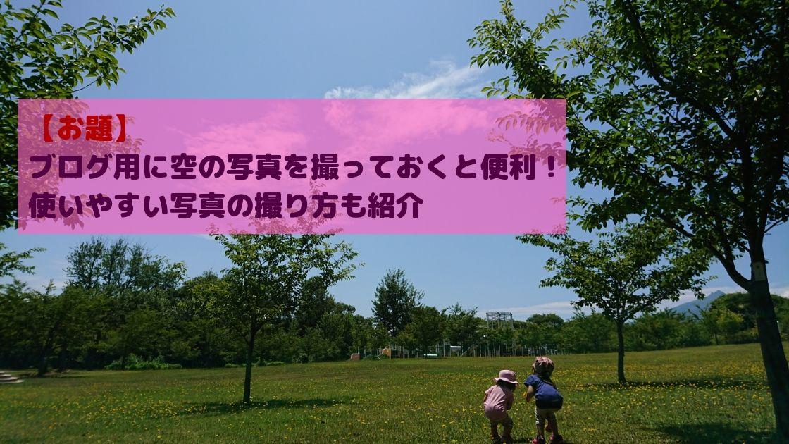 f:id:yuzukimusyamusya:20190721165122j:plain