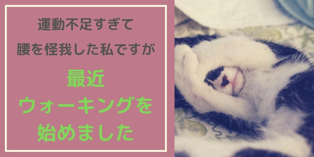 f:id:yuzukimusyamusya:20191017152711j:plain