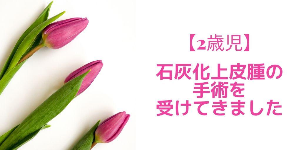 f:id:yuzukimusyamusya:20200301000126j:plain