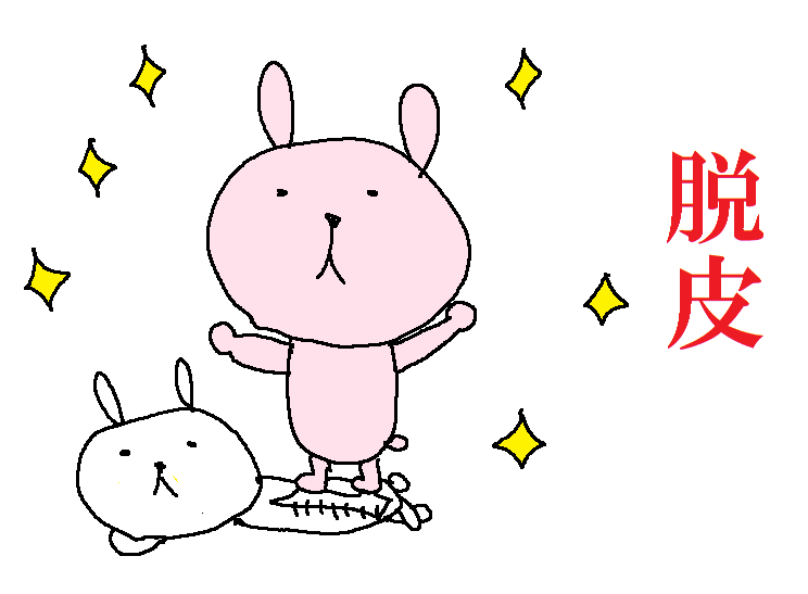f:id:yuzukko_fx:20170404144821p:plain