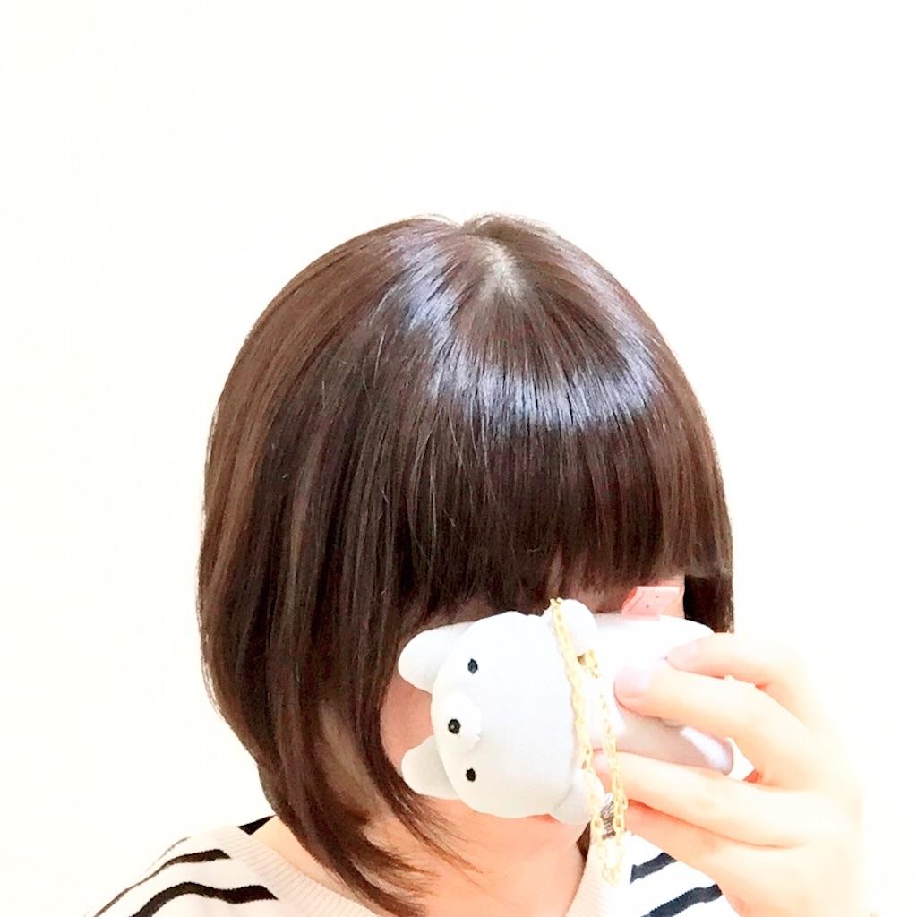 f:id:yuzukko_fx:20170418074718j:image