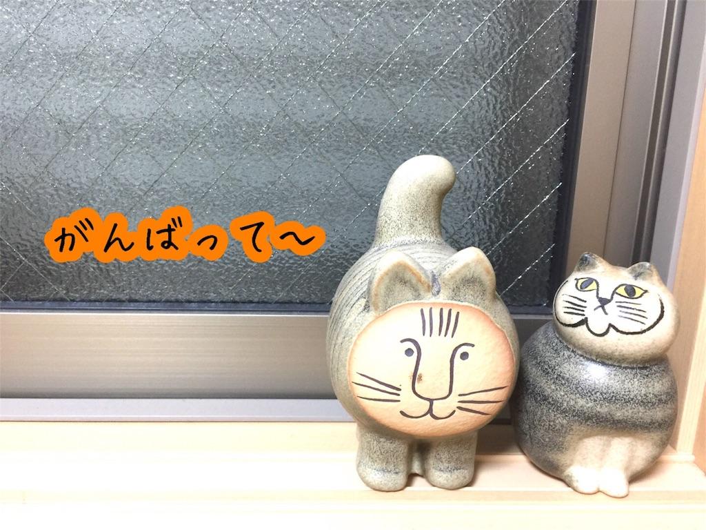 f:id:yuzukko_fx:20170611202305j:image