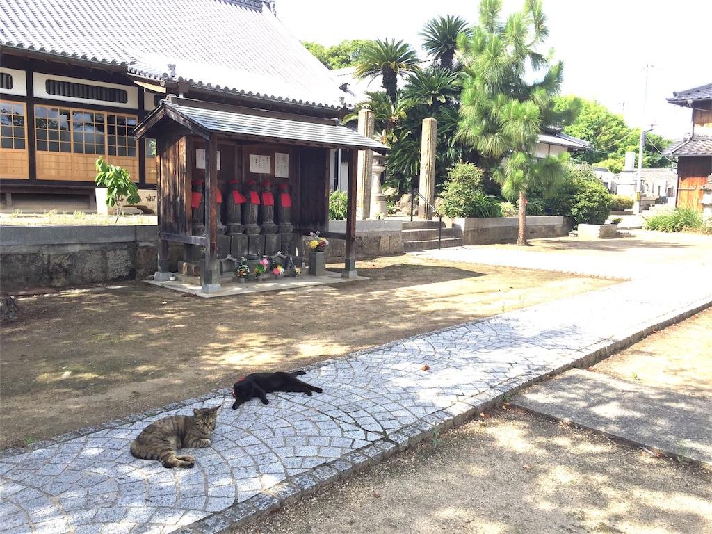 f:id:yuzukko_fx:20170621191622j:image