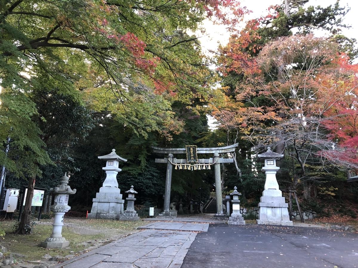 f:id:yuzumatcha1113:20190319225411j:plain