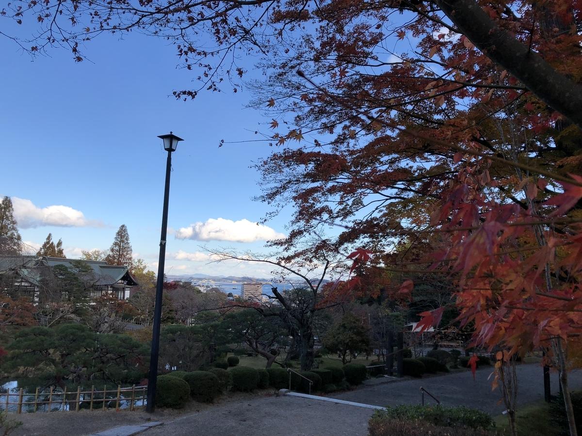 f:id:yuzumatcha1113:20190319225550j:plain