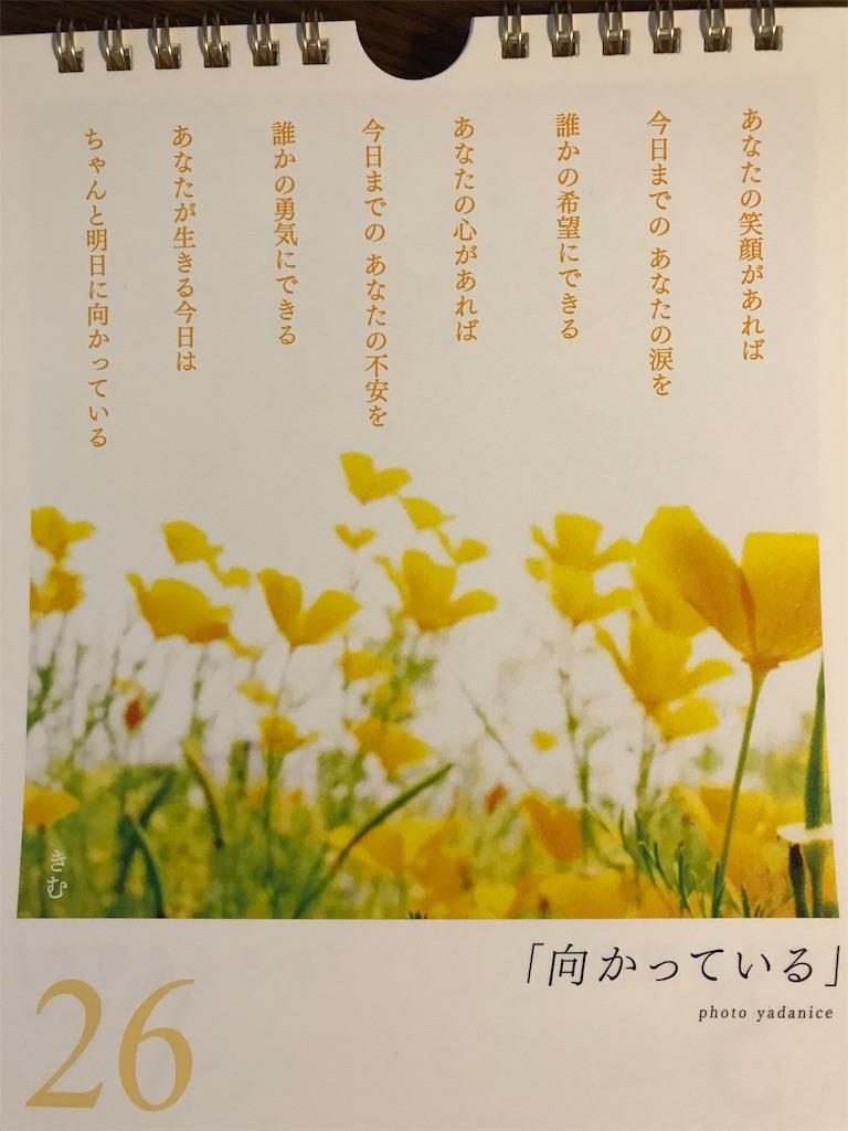 f:id:yuzunohana:20191126100444j:image