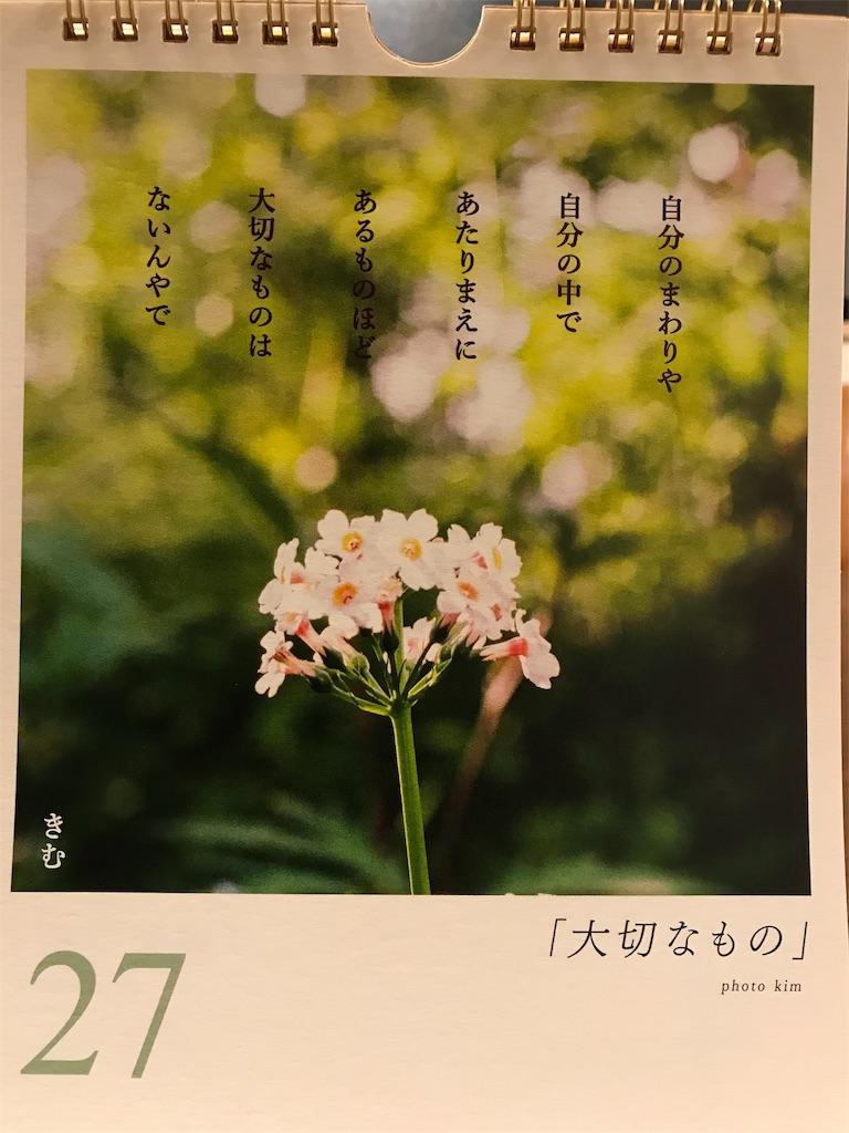 f:id:yuzunohana:20191127233734j:image