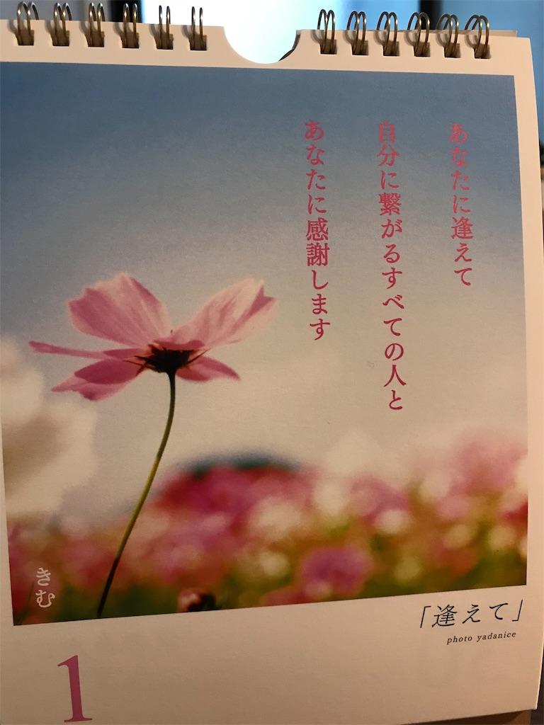 f:id:yuzunohana:20191203160116j:image
