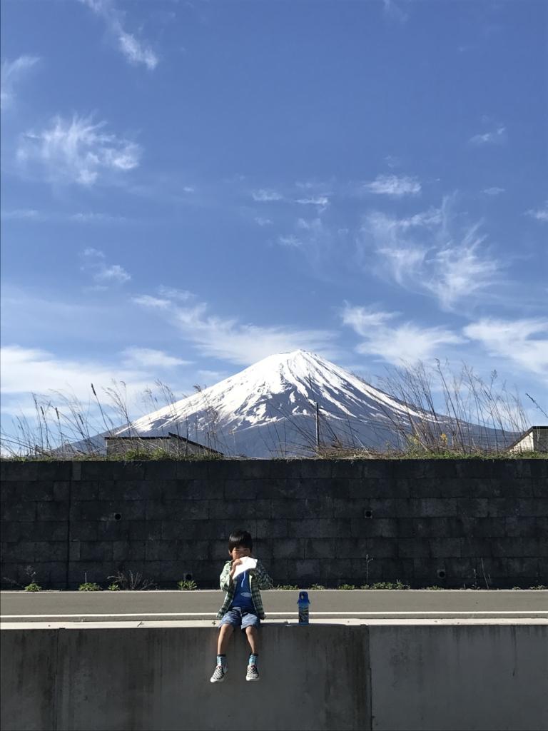 f:id:yuzupapa529:20170514205310j:plain