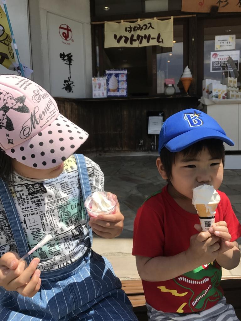 f:id:yuzupapa529:20170515214648j:plain