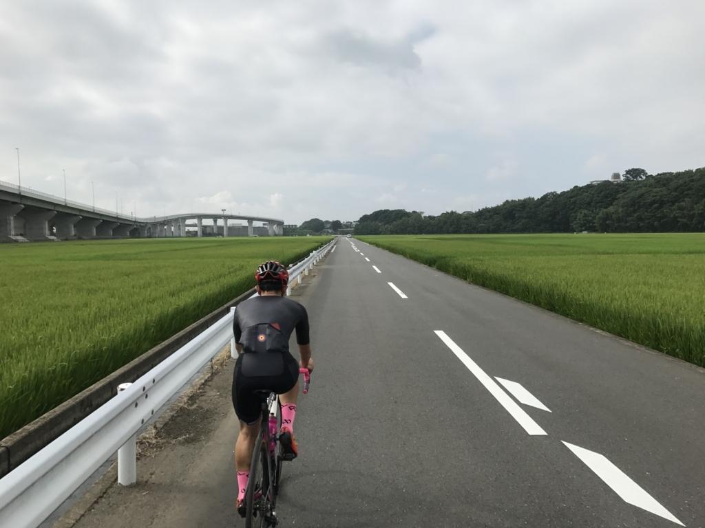 f:id:yuzupapa529:20170808082105j:plain