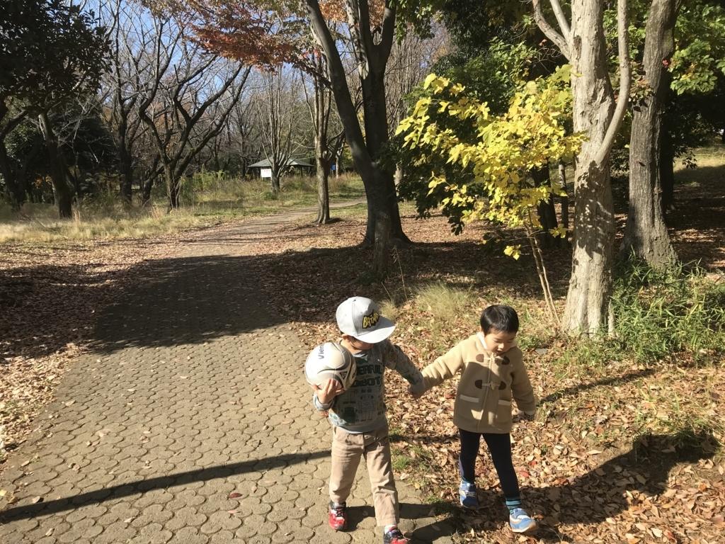 f:id:yuzupapa529:20171128221205j:plain