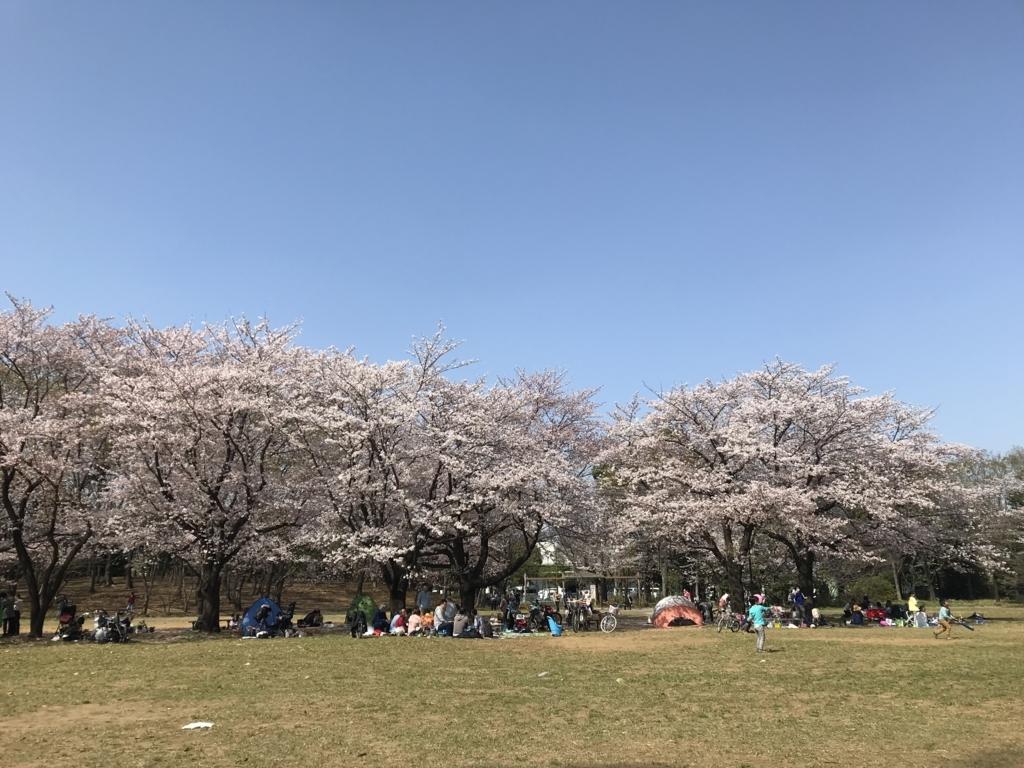 f:id:yuzupapa529:20180404074543j:plain