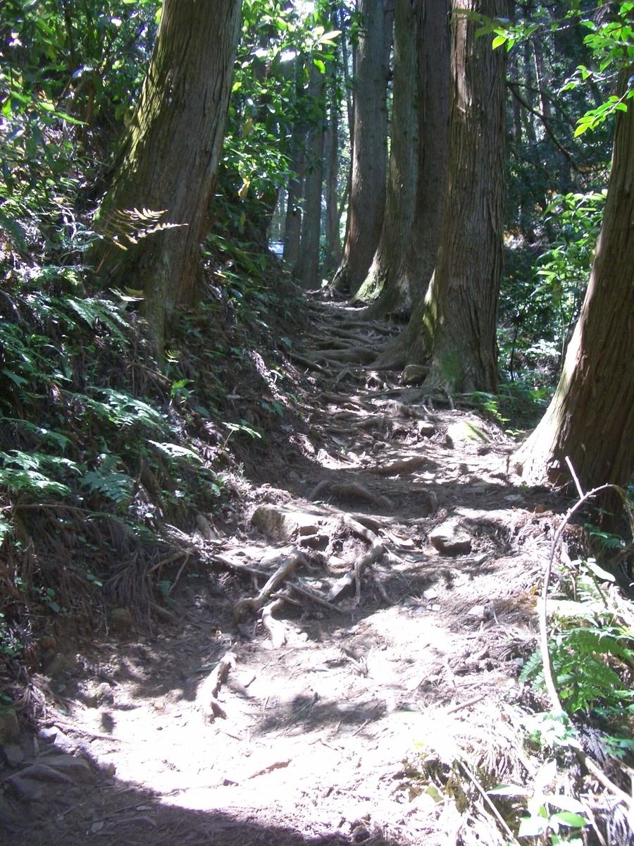 御岩神社 表参道 登山