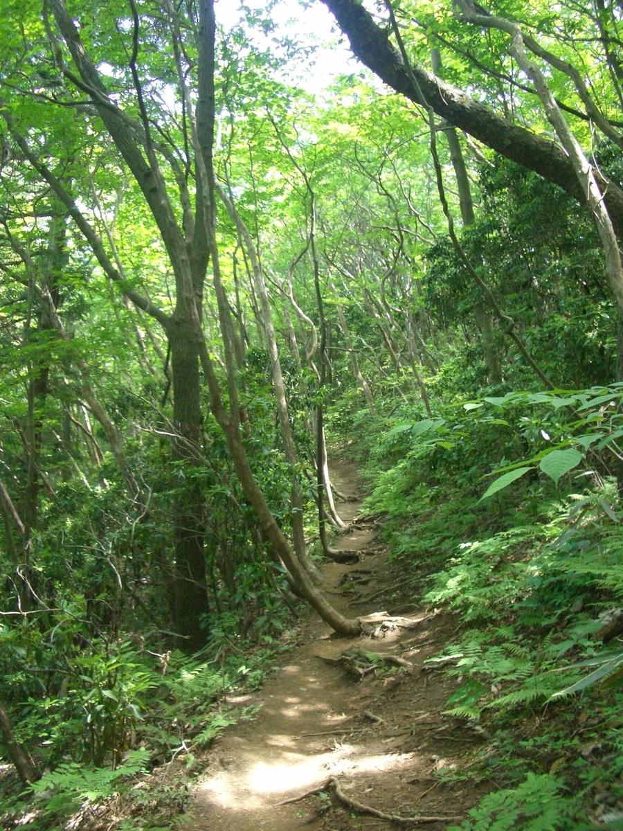 御岩神社 登山道