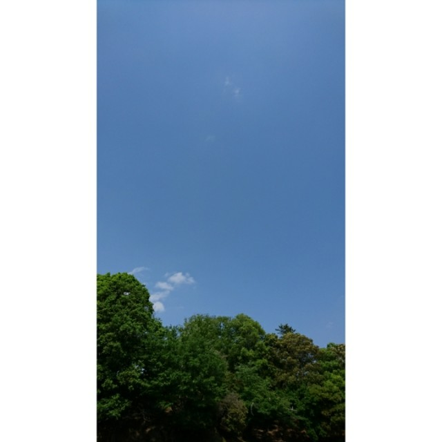 f:id:yuzurihasalon:20180526123109j:image