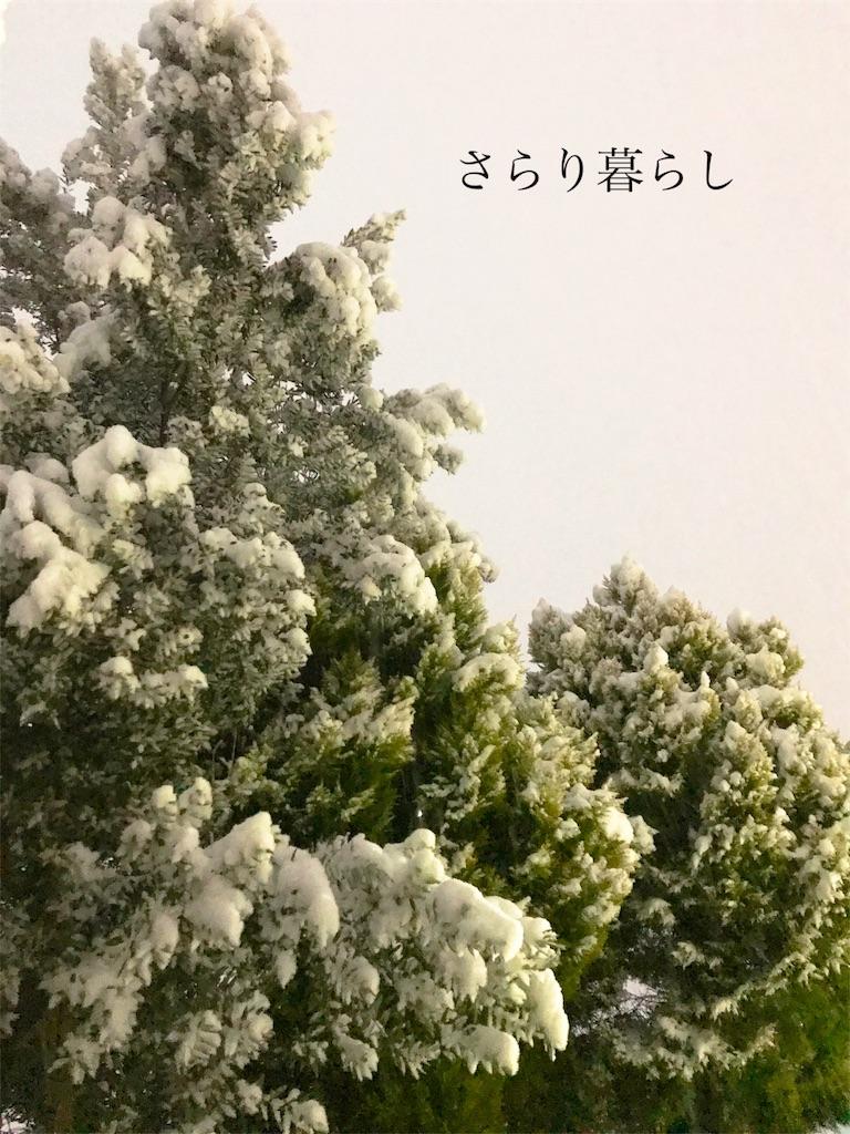 f:id:yuzushiohamachi:20180123014140j:image