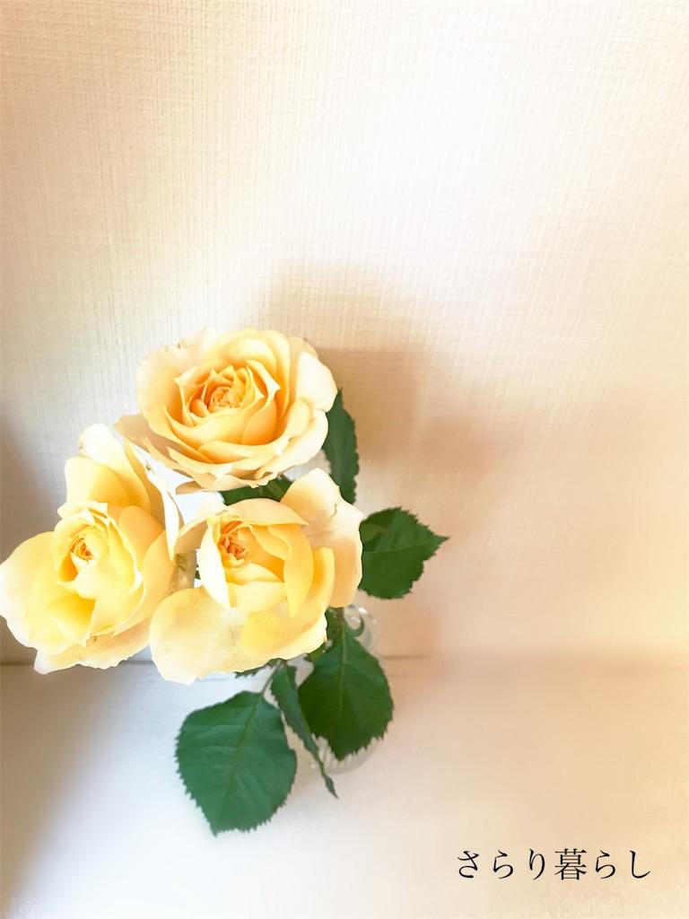 f:id:yuzushiohamachi:20180130004244j:image