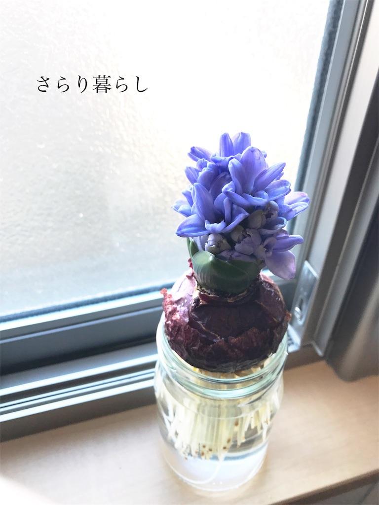 f:id:yuzushiohamachi:20180205123940j:image