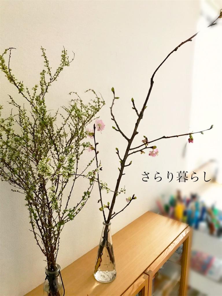 f:id:yuzushiohamachi:20180226181131j:image