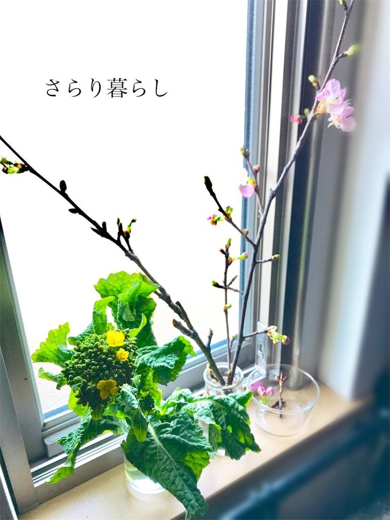 f:id:yuzushiohamachi:20180226181645j:image