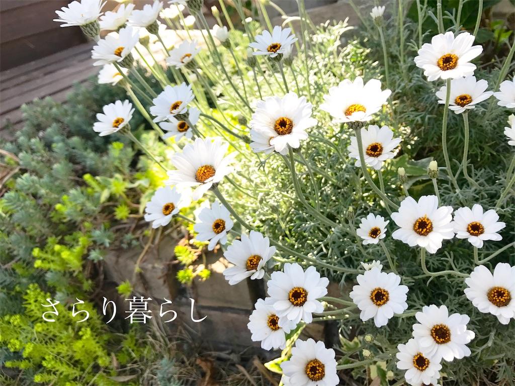 f:id:yuzushiohamachi:20180419145654j:image